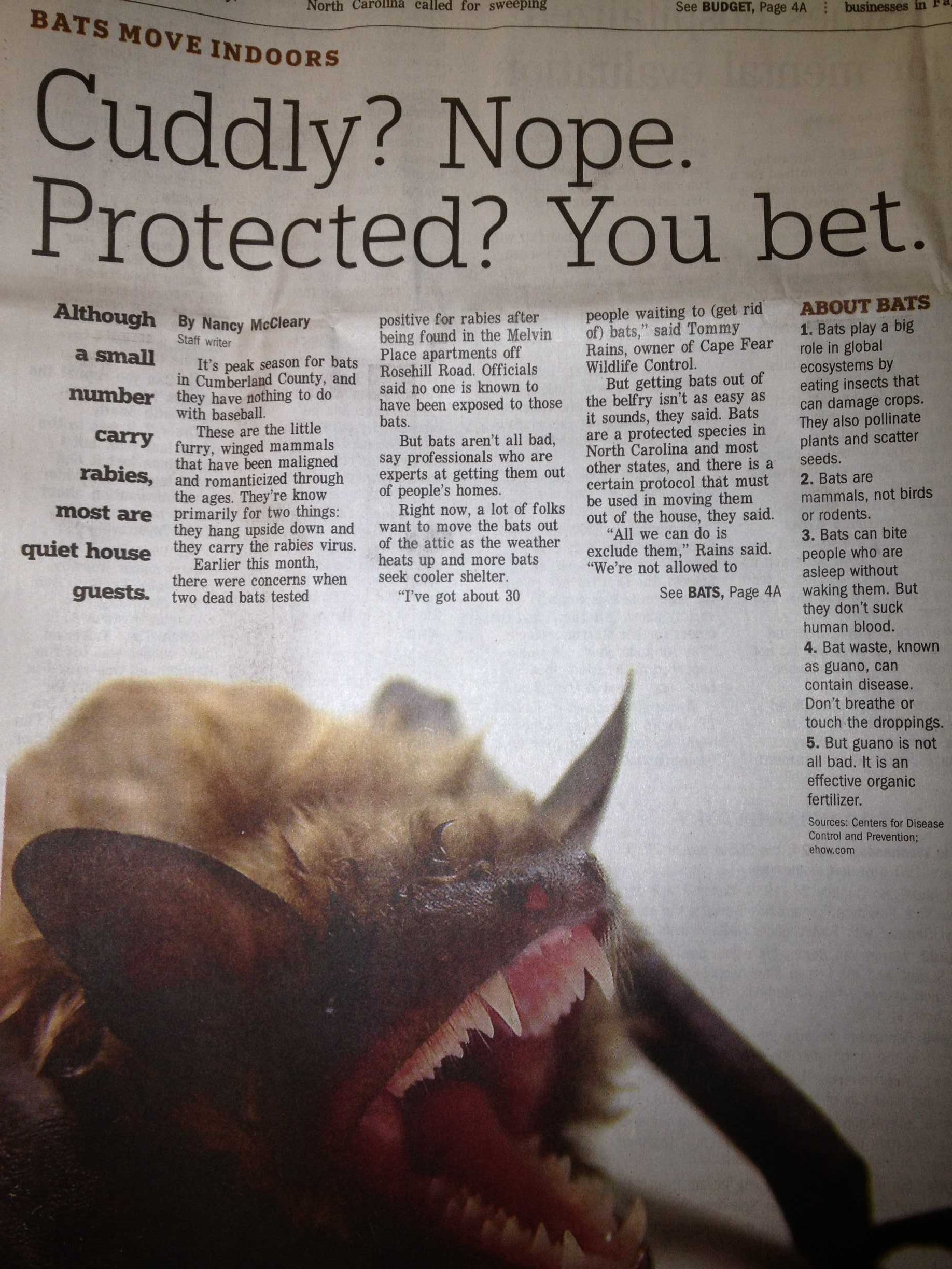 Article from the Fayetteville Observer on bats in which we were featured