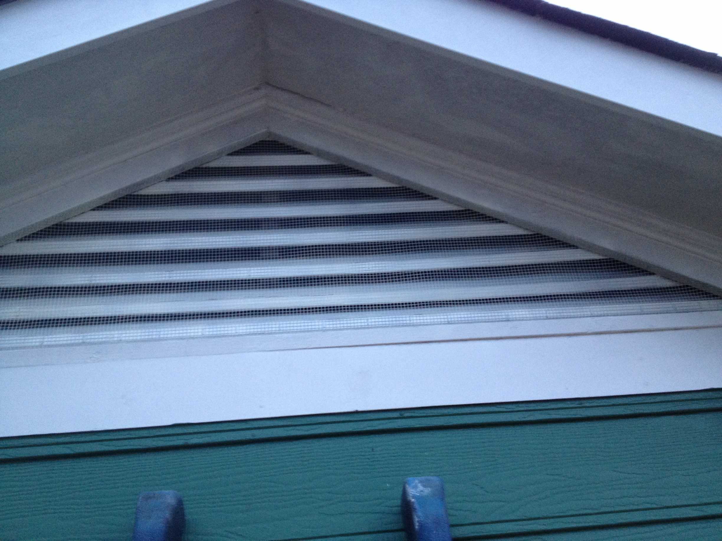 Bat Proofed Triangle Gable